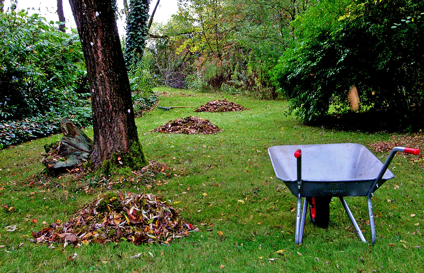 fotoblog seite 6 das saarland im bild. Black Bedroom Furniture Sets. Home Design Ideas